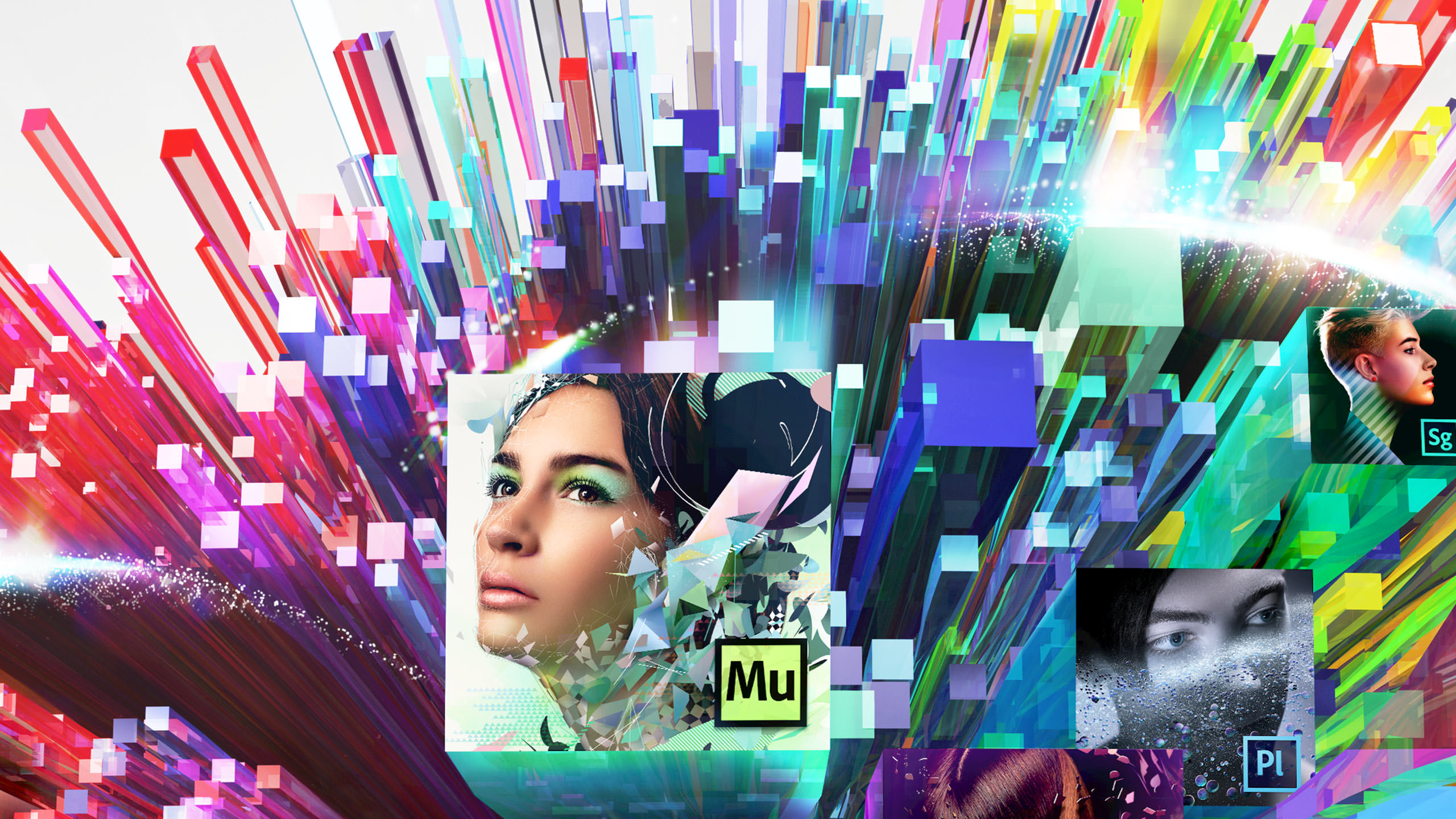Adobe creative Cloud Identity 2013 Detail Center